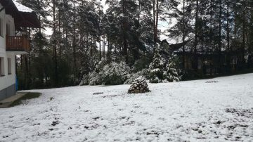 Zlatibor u maju - sneg